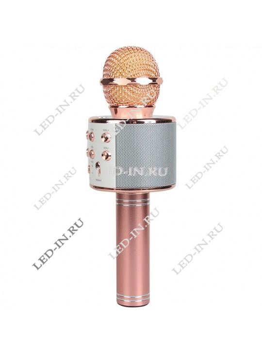 Колонка-микрофон